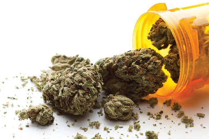 Cannabis in Medicine Growing the Next Billion Dollar Industry