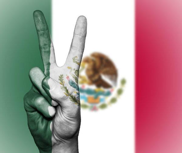 Mexico Supreme Court ends marijuana prohibition