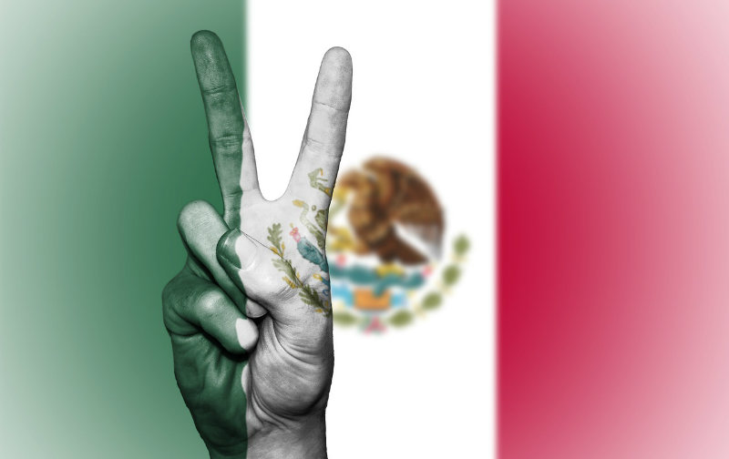 Mexico Supreme Court ends marijuana prohibition