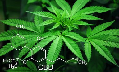 CBD Explained: Legality, Benefits, Dosing, & Side Effects