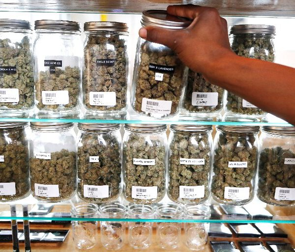 In this Oct. 2, 2018, file photo, a clerk reaches for a container of marijuana buds for a customer at Utopia Gardens, a medical marijuana dispensary in Detroit. Chronic pain is the most commonly cited reason people give when they enroll in state medical cannabis programs. A study published Monday, Feb. 4, 2019, in the journal Health Affairs looks at available data from states that allow marijuana for medical use. (AP Photo/Carlos Osorio, File)