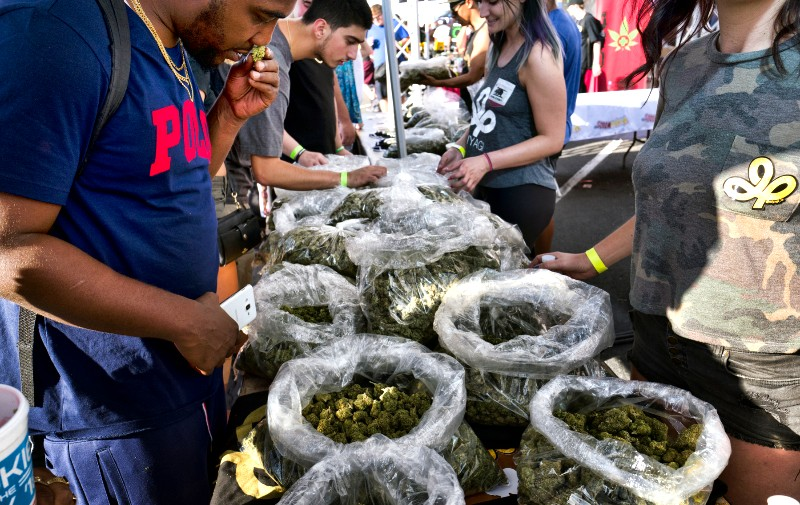 "In this Oct. 20, 2018, file photo, a customer takes a sniff test from the selection of marijuana strains at Miyagi LA booth at the cannabis-themed Kushstock Festival at Adelanto, Calif. When California voters broadly legalized marijuana in 2016, they were promised that part of the tax revenue from pot sales would be devoted to programs to teach youth how to avoid substance abuse and ""prevent harm"" from marijuana use. But more than a year after the start of sales, there's no money for those programs and looming questions about how they might operate in the future. (AP Photo/Richard Vogel, File)"