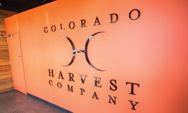 "Colorado Harvest Company CEO's ""Breaking Bad"" Journey into Cannabis"