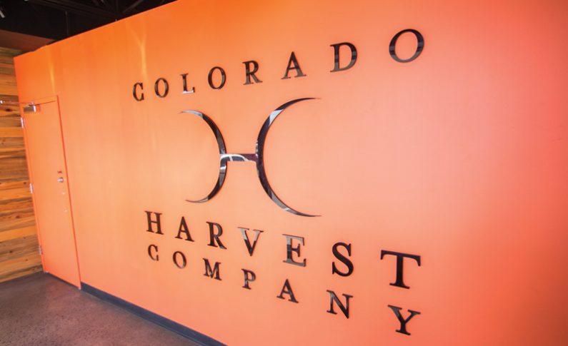 """Colorado Harvest Company CEO's """"Breaking Bad"""" Journey into Cannabis"""