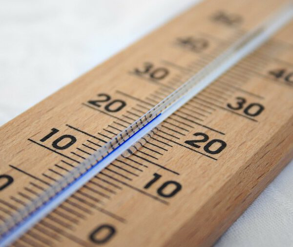 Temperature control is a vital component of operating a successful grow.