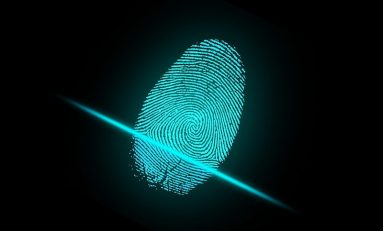 How Cannabis Companies Can Utilize Biometric Identification