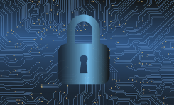 Data Security & Cannabis: What You Need to Know