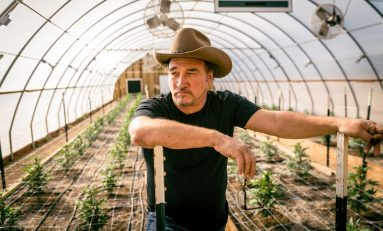Inside Jim Belushi's Cannabis Operation, Belushi's Farm