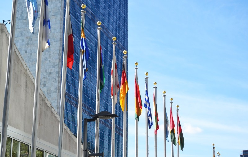Will The United Nations Change Global Cannabis Policy In December?