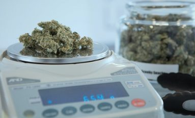Military Veteran Fired For Medical Marijuana Use