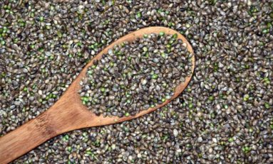 The Benefits of Adding Hemp Seeds To Your Daily Diet