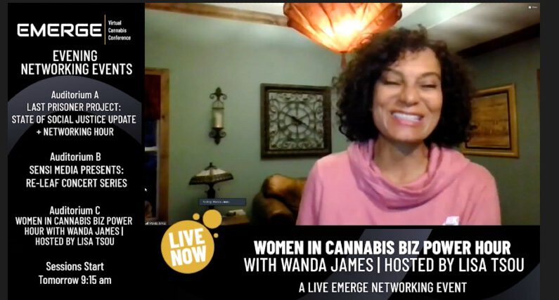 Simply Pure CEO Wanda James Wants Women to Brag More