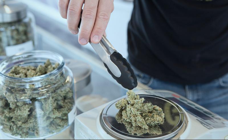 COVID-19 Anxiety Drives Cannabis Use Across America