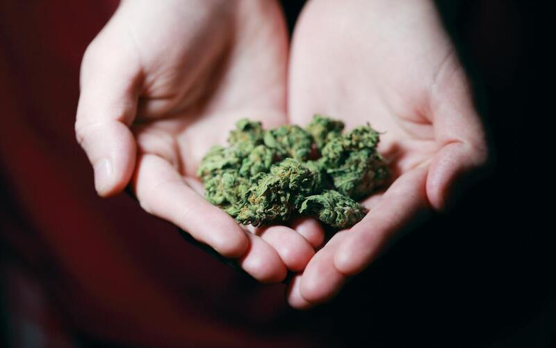 Virginia Legalizes Possession, Home Cultivation of Cannabis