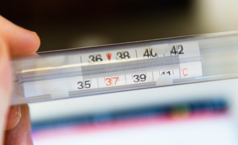 Why is temperature control important to the cannabis industry?