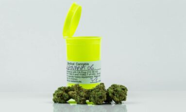 Breaking News: Connecticut Legalizes Cannabis