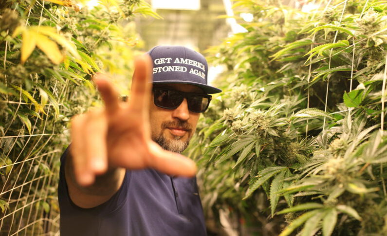 B-Real And Kenji Fujishima Want to Grow Your Pot