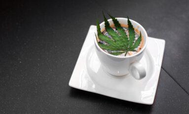 Surprisingly Smart Data for Cannabis Tourism